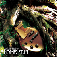 Joel Harrison - Mother Stump