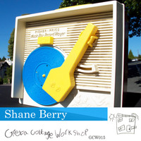 Shane Berry - How to Use a Turntable – Single