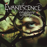 Evanescence - Anywhere But Home (Live [Explicit])