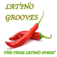 Lounge Lizards - Latino Grooves