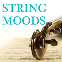 String Orchestra - String Moods