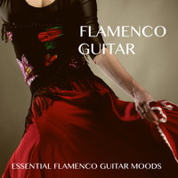 Lounge Lizards - Flamenco Guitar