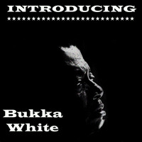 Bukka White - Introducing Bukka White