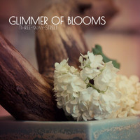 Glimmer of Blooms - Three-Way-Street