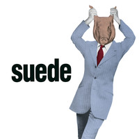 Suede - Animal Nitrate