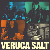 Veruca Salt - It's Holy