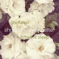 Steffaloo - Shoulda Known Better