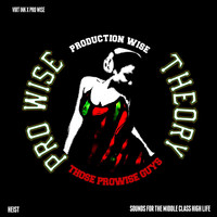 Heist - The Pro Wise Theory