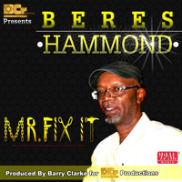 Beres Hammond - Mr. Fix It
