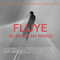 La Union - Fluye. Be Water My Friend