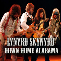 Lynyrd Skynyrd - Down Home Alabama