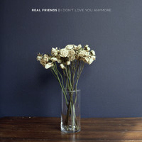 Real Friends - I Don't Love You Anymore