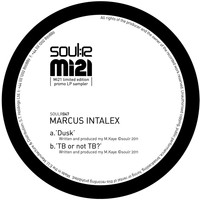 Marcus Intalex - Dusk / TB or Not TB?
