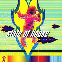 State Of House - Invasion