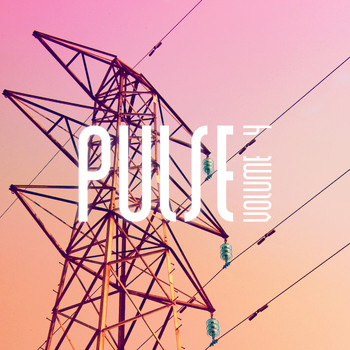 Various Artists - Pulse (Vol. 4) - Groovy Deep House For the Perfect lounge