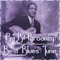 Big Bill Broonzy - Best Blues Tune