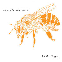 The Life And Times - Lost Bees