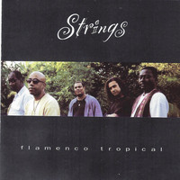 Strings - Flamenco Tropical