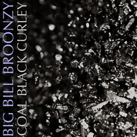 Big Bill Broonzy - Coal Black Curley