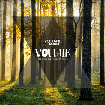 Various Artists - Voltaik, Vol. 14