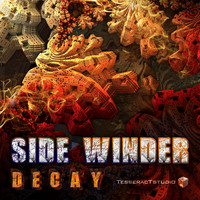 Side Winder - Decay