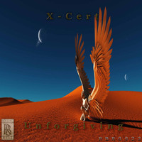 X-Cert - Unforgiving