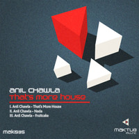 Anil Chawla - That's More House