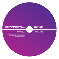 Bungle - Too Late / Human Poison