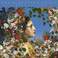 The Pineapple Thief - Simple as That