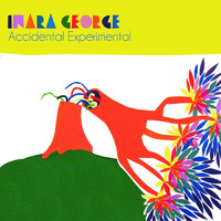 Inara George - Accidental Experimental