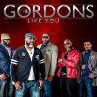 The Gordons - Like You