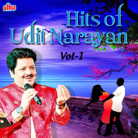 Udit Narayan - Hits of Udit Narayan, Vol. 1