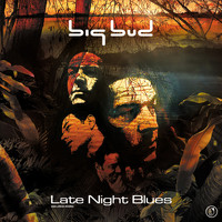 Big Bud - Late Night Blues
