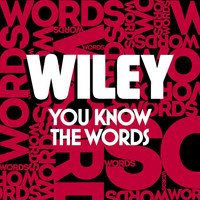 Wiley - You Know The Words (Explicit)