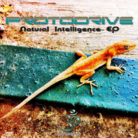ProtoDrive - Natural Intelligence