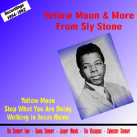 Sly Stone - Yellow Moon & More from Sly Stone