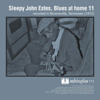 Sleepy John Estes - Blues At Home 11