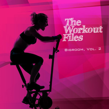 Various Artists - The Workout Files - Bigroom, Vol. 2