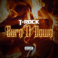 T-Rock - Burn It Down - Single