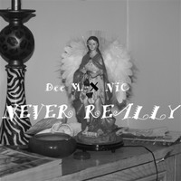 NIC - Never Really (feat. Nic)