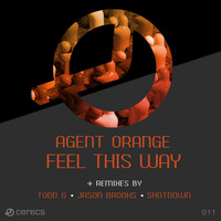 Agent Orange - Feel This Way