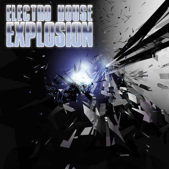 Various Artists - Electro House Explosion