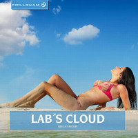 Lab s Cloud - Beach Favour