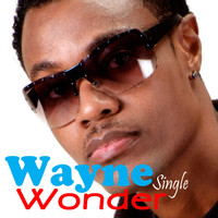 Wayne Wonder - Piece A Da Pie