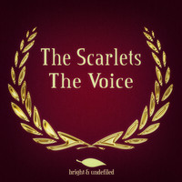 The Scarlets - The Voice