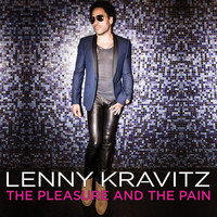 Lenny Kravitz - The Pleasure and the Pain