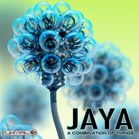 Jaya - A Combination Of Things