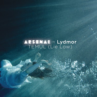 Arsenal - Temul (Lie Low)