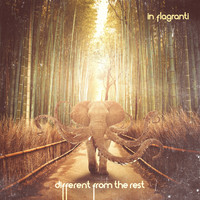 In Flagranti - Different from the Rest - EP