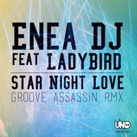 Enea Dj - Star Night Love